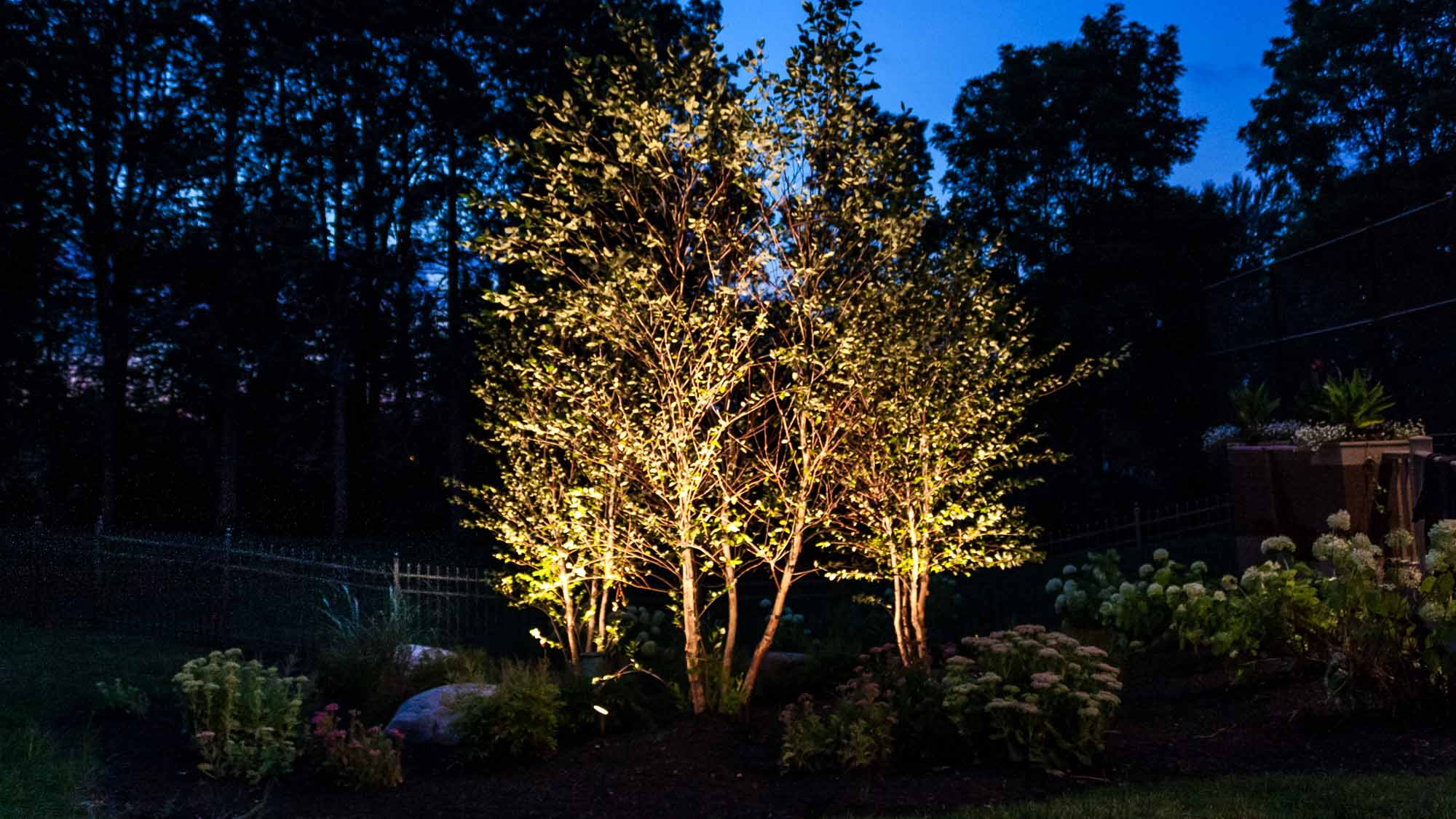 Garden Lighting Luminated Landscapes